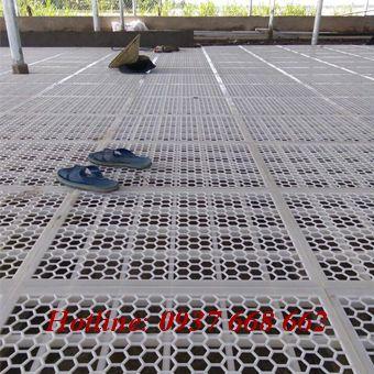 Bán tấm lót sàn chuồng vitk. Kích thước: 50x60x3 cm
