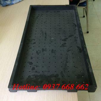 Khay gieo mạ 5 chấu - Kt: 600x300x35 mm