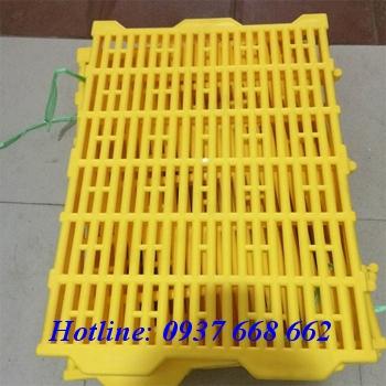 Sàn heo 40x55 màu vàng