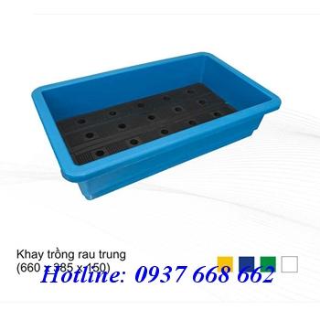 Khay trồng rau trung giá rẻ. kích thước: 660x385x150 mm